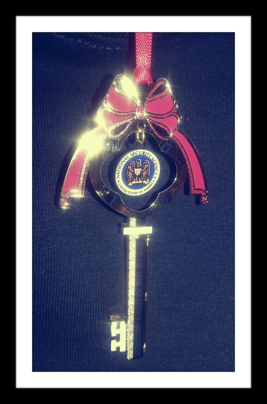 NSA Ornament
